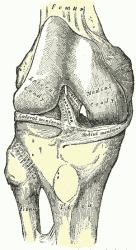 ginocchio-instabile-questione-di-geometria