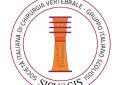 Congresso Sicv&#038;Gis, focus </br>su deformità vertebrali dell&#8217;adulto <br>e fratture da fragilità