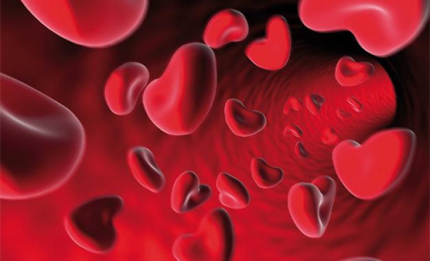 Tromboprofilassi estesa <br />dopo chirurgia maggiore