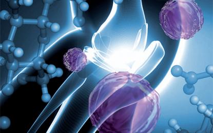 Focus sull'innovazione: acido ialuronico per il drug delivery di molecole biostimolanti