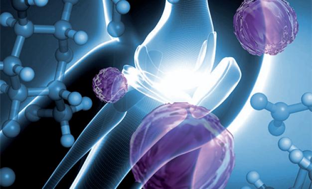 Focus sull&#8217;innovazione:<br /> acido ialuronico per il drug delivery <br />di molecole biostimolanti