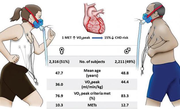 Fitness cardiorespiratorio <br>abbassa il rischio di sviluppare <br>patologie cardiovascolari