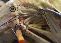 Legamento antero-laterale esiste? <br>Le implicazioni cliniche <br>di una struttura anatomica elusiva